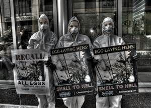 Vegan Protest against the consumption of eggs