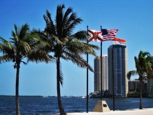 Two palm trees stand next to the Florida State flag, the American flag, and the Miami City flag, with the Miami bay behind.
