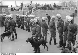 A black and white photograph of police holding dogs that will attack hooligans if they become too violent in public