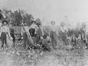 Sharecroppers posing in a field.